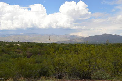 Residential Lots & Land For Sale: 11310 E Twin Hills Trail