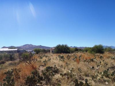 Corona de Tucson Residential Lots & Land For Sale: 136 S Montgomery Avenue #100