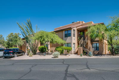 Tucson Single Family Home For Sale: 6651 N Campbell Avenue #258