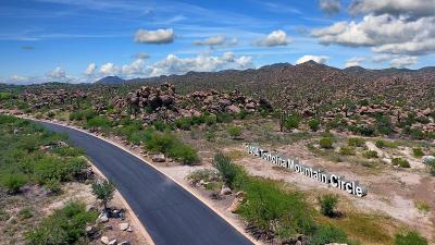 Tucson Residential Lots & Land For Sale: 1497 W Tortolita Mountain Ci Circle W #282