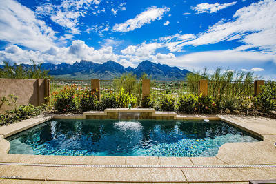 Oro Valley Single Family Home Active Contingent: 10752 N Chapin Court