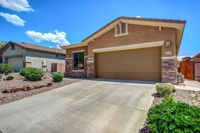 Marana Single Family Home For Sale: 12570 N Gentle Rain Drive
