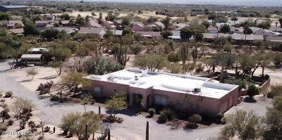 Tucson Single Family Home For Sale: 9745 N Palo Quemado