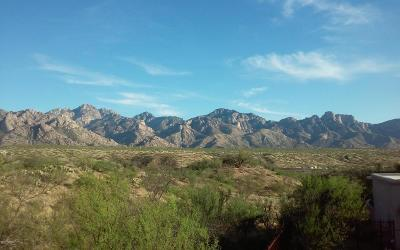 Catalina Residential Lots & Land For Sale: 14320 N Bowman Road