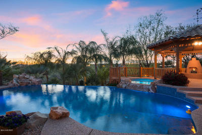 Oro Valley Single Family Home For Sale: 10325 N La Cholla Boulevard