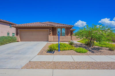 Single Family Home Active Contingent: 10459 S Cutting Horse Drive
