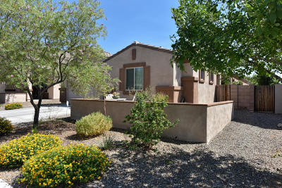 Single Family Home Active Contingent: 1257 W Molinetto Drive