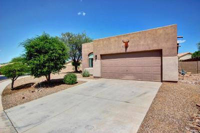 Vail Single Family Home Active Contingent: 431 E Cactus Mountain Drive