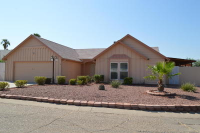 Cortaro Crossing Blks I-Ii (1-119), Cortaro Ranch (1-297), Cortaro Ridge (1-124) Single Family Home For Sale: 8550 N Holly Brook Avenue
