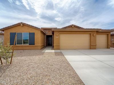 Marana Single Family Home For Sale: 11481 W Bolney Gate Drive W