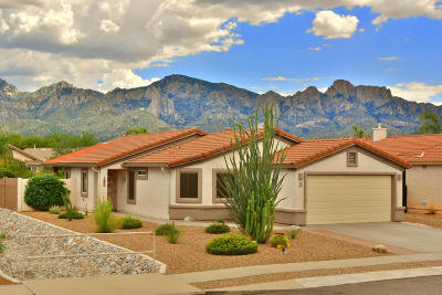 Single Family Home Active Contingent: 13392 N Wide View Drive