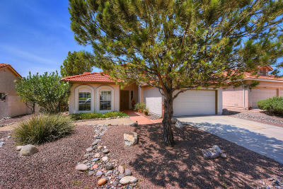 Saddlebrooke Single Family Home Active Contingent: 38060 S Mountain Site Drive