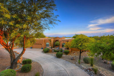 Oro Valley Single Family Home For Sale: 1075 W Ironwood Valley Drive