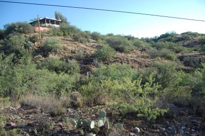 Residential Lots & Land For Sale: 16409 N Lago Del Oro Parkway