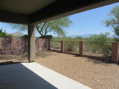 Marana Single Family Home For Sale: 12582 N Gentle Rain Drive
