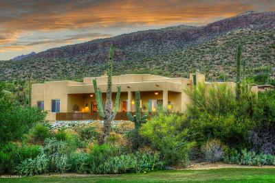 Tucson Single Family Home For Sale: 9730 E Sabino Estates Drive