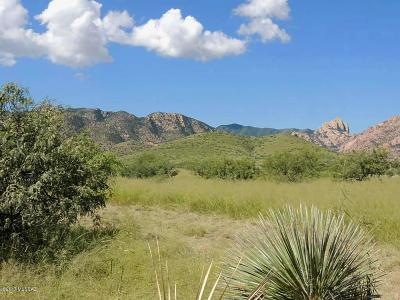 Cochise Residential Lots & Land For Sale: 1200 W Ironwood Road #1