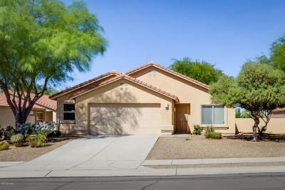 Single Family Home Active Contingent: 13563 N Wide View Drive