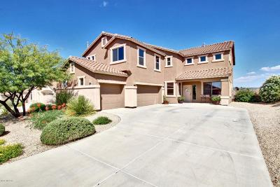 Vail Single Family Home Active Contingent: 10769 S Alley Mountain Drive