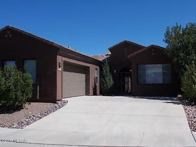 Green Valley Single Family Home For Sale: 1737 W Placita Canoa Azul