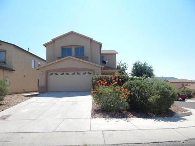 Tucson Single Family Home For Sale: 7231 S Camino Secreto