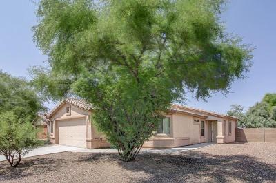 Marana Single Family Home For Sale: 11138 W Fallen Willow Drive
