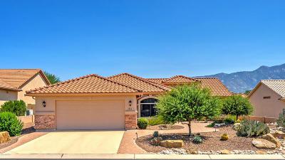 Saddlebrooke Single Family Home For Sale: 39841 S Shortcut Avenue
