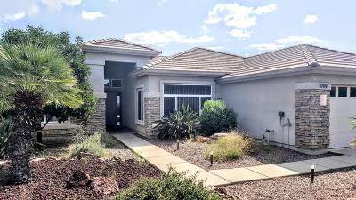 Saddlebrooke Single Family Home For Sale: 62981 E Harmony Drive