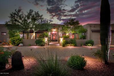 Tucson Single Family Home For Sale: 10255 N Lambert Court
