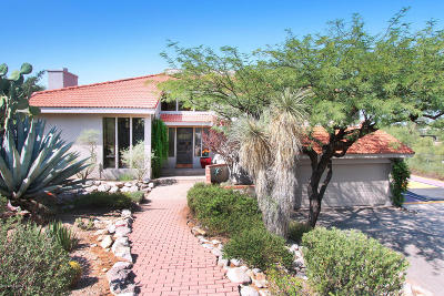 Tucson Single Family Home For Sale: 7041 N Skyway Drive