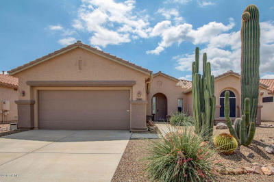 Continental Ranch Sunflower Single Family Home Active Contingent: 7949 W Blue Heron Way