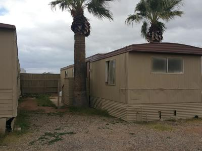 Tucson Residential Income For Sale: 450 W Thurber Road