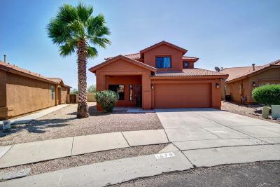 Single Family Home For Sale: 1579 W Valladolid Drive