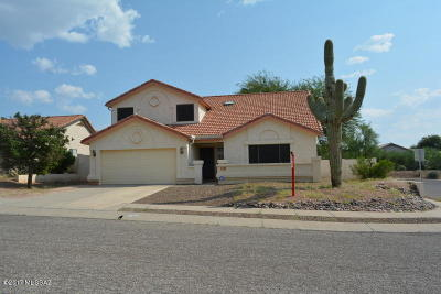 Tucson Single Family Home For Sale: 9710 E Celtis Avenue
