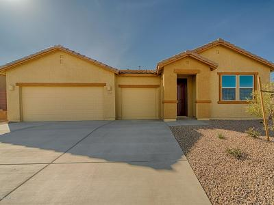 Sahuarita Single Family Home For Sale: 1310 E Stronghold Canyon Lane