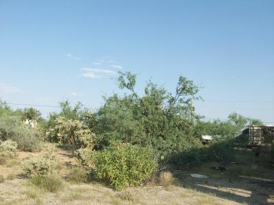 Residential Lots & Land For Sale: 12420 W Vegas Drive