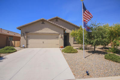 Marana Single Family Home For Sale: 14187 N Dart Point Way