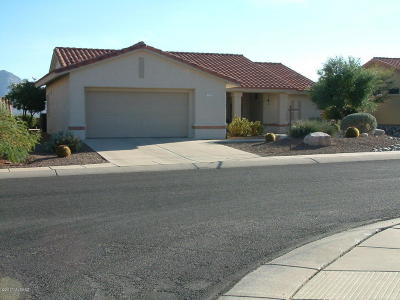 Oro Valley Single Family Home For Sale: 2332 E Chrysanthemum Street