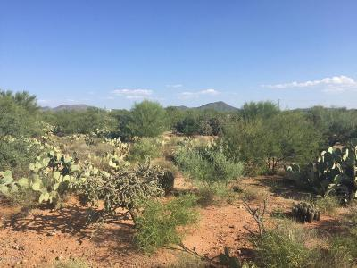 Vail AZ Residential Lots & Land For Sale: $105,000