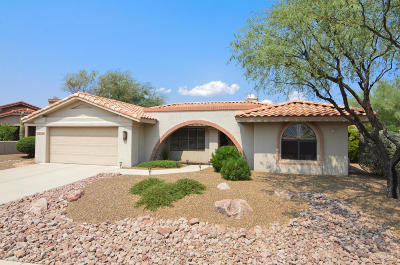 Oro Valley Single Family Home For Sale: 14683 N Alamo Canyon Drive