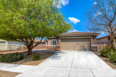 Vail Single Family Home Active Contingent: 17161 S Mesa Shadows Drive