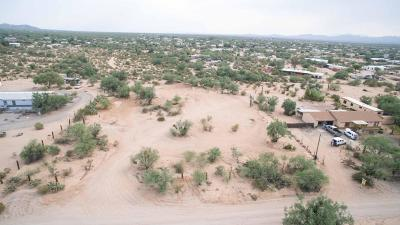Residential Lots & Land For Sale: 13099 W Trail Dust Road