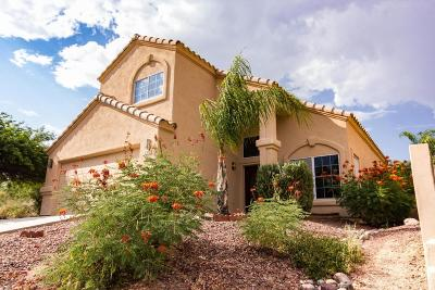 Oro Valley Single Family Home For Sale: 1311 E Scorpius Place