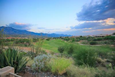 Tucson Single Family Home For Sale: 65805 E Desert Ridge Drive