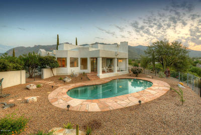 Single Family Home Active Contingent: 4620 E Blue Mountain Drive