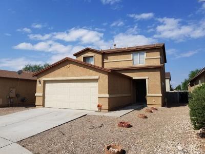 Single Family Home For Sale: 3778 E Desert Wash Court