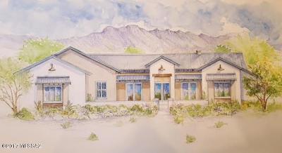 Tucson Single Family Home For Sale: 2483 N Lloyd Bush Drive