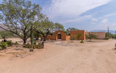 Tucson Single Family Home For Sale: 11055 E Snyder Road
