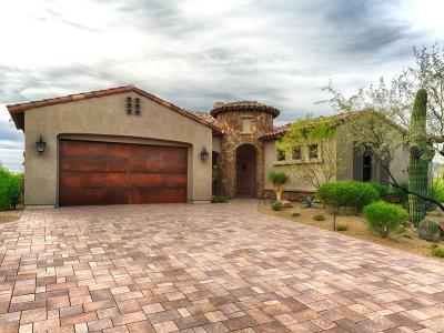 Pima County Single Family Home For Sale: 13993 N Stone Gate Place