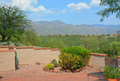 Tucson Single Family Home For Sale: 4880 N Grey Mountain Trail